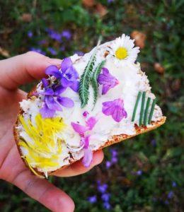 ruka u kojoj se nalazi komad kruha s namazom, listom stolisnika i cvjetovima ljubičice, plućnjaka, tratinčice i maslačka